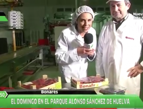 Bonafrú reparte 400 tarrinas de berries en el Mercado de Productores andaluces